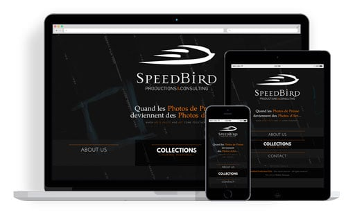 SpeedBird Productions & Consulting